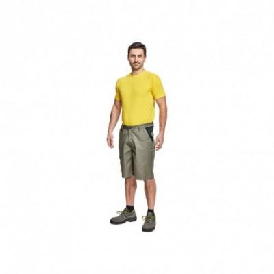 CREMORNE šortky